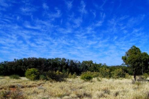 Oz-Big-Sky